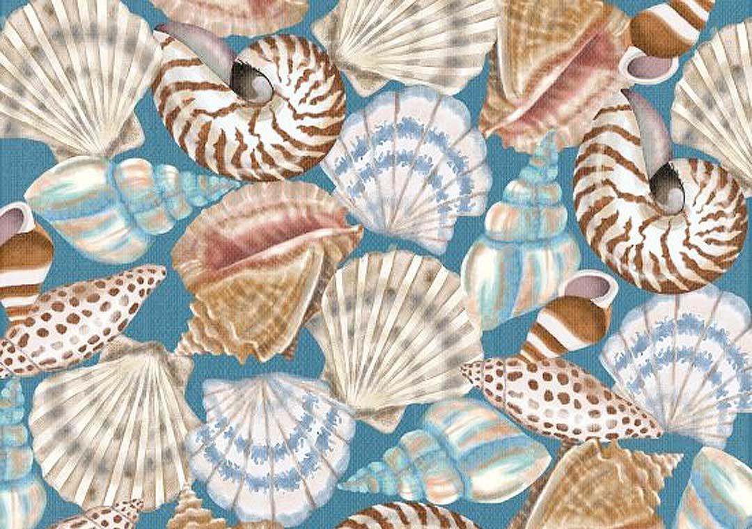 Seaside Shells Blue