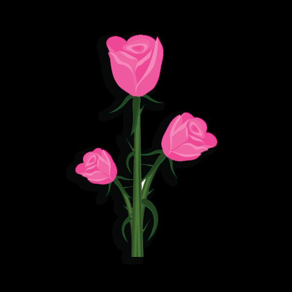 Alpha Gamma Rho Flower - Pink Rose