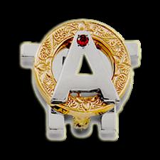 Alpha Omicron Pi Badge