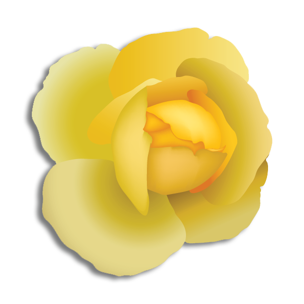 Alpha Phi Alpha Flower - Yellow Rose