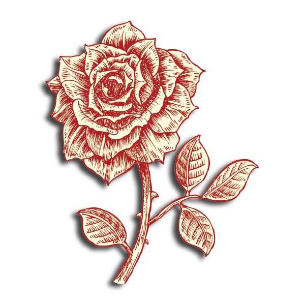 Beta Theta Pi Flower - Roses of the June or Queen of the Prairie Variety