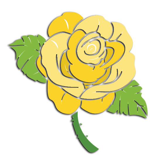 Delta Lambda Phi Flower - Yellow Rose