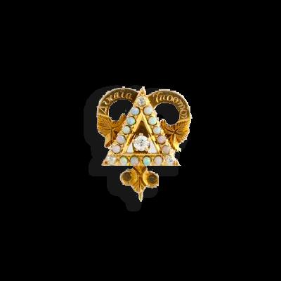 Delta Upsilon Badge