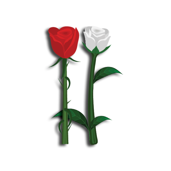 FarmHouse Fraternity Flower - Red and White Roses