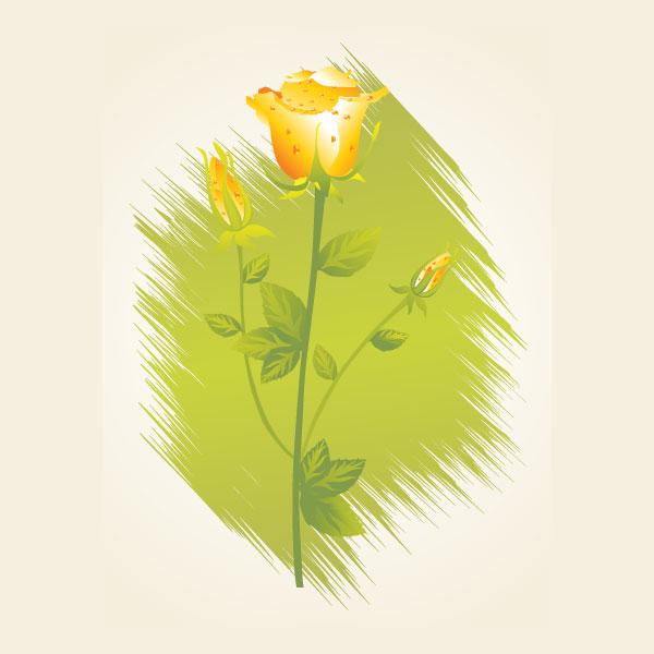 Iota Phi Theta Flower - Yellow Rose