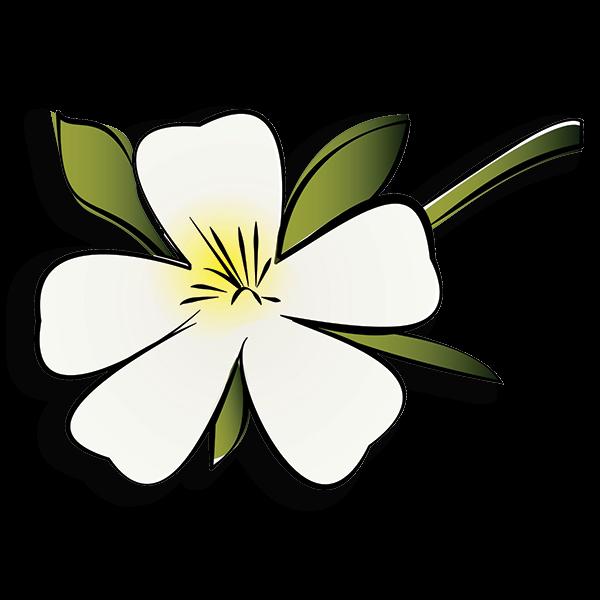 Zeta Tau Alpha Flower - White Violet